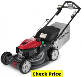 Best Gas Lawn Mower 2020