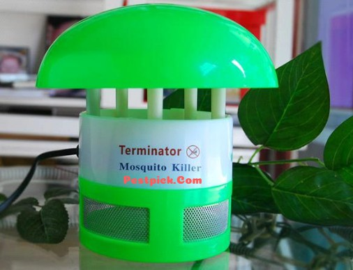 How To Control Mosquitoes 2019