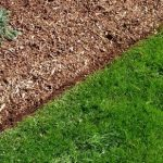 Lawn Edging Ideas 2019 | Make Simple and Modern