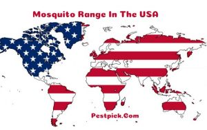 Mosquito Range In The USA 2020